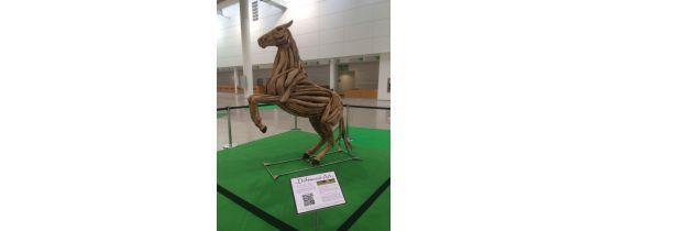 Internationale Fachmesse für Pferdesport in Köln